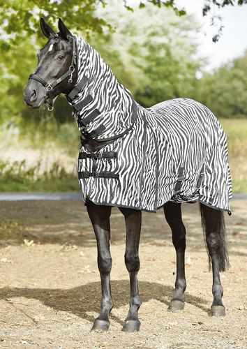 PADDOCK Fly Sheet ZEBRA by BUSSE