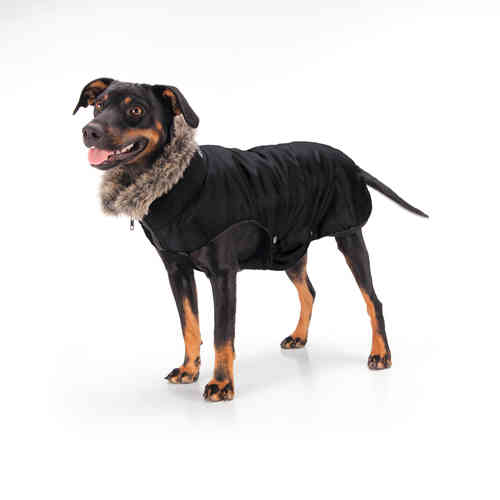 ESKADRON Dog Coat Nylon Autumn 15/16
